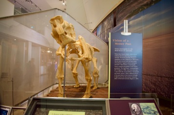 Giant Marsupial