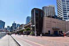 Pedestrian precinct of Darling Harbour
